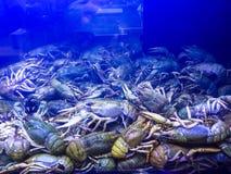 Zeevruchtenmarkt in Moskou royalty-vrije stock fotografie