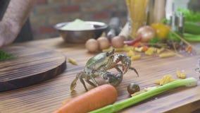 Zeevruchtenrestaurant Leef krab op keukenlijst in zeevruchtenrestaurant Chef-kokkok die voedsel van verse krab voorbereiden vers stock footage