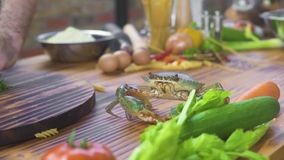 Zeevruchtenrestaurant Overzeese krab die op keukenlijst kruipen aangaande de achtergrond van het voedselingrediënt Leef krab op l stock video