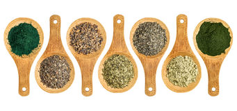 Zeewier en van de algenvoeding supplementen Royalty-vrije Stock Foto's