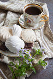 Zefiro della vaniglia Immagini Stock