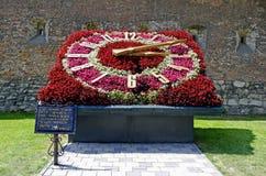 Zegar robić kwiaty Obrazy Stock