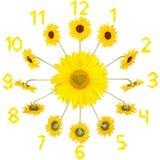 Zegar z słonecznikami Obraz Royalty Free