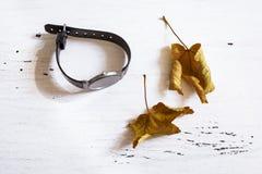 Zegarka drewna stołu spadku liścia zegarka rocznika czasu żółty męski czarny biały sens fotografia stock