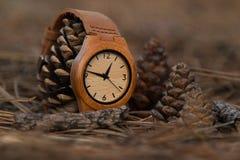 Zegarki w drewnach Obrazy Royalty Free