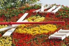 Zegarowy kwiat Obrazy Royalty Free