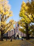 Zegarowy wierza Yasuda audytorium wielka hala przy Tokio uniwersytetem Fotografia Royalty Free