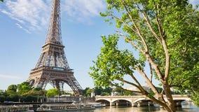 Zegen in Parijs met de Toren van Eiffel op zonsopgang stock video