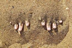 Zehen im Sand Stockfoto