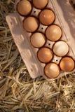 Zehn braune Eier in einem Pappkarton auf Stroh Lizenzfreies Stockbild