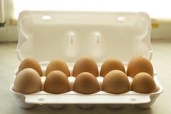 Zehn Hühnereien brünieren Farbe in der offenen Schaumverpackung Stockfotos