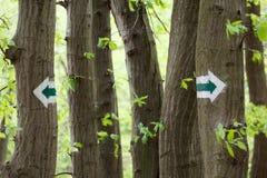 Zeichen auf Bäumen Stockfotos
