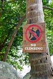 Zeichen auf der Palme Lizenzfreie Stockbilder