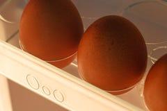 Zeichen der Eierablage Stockfoto