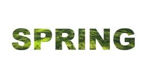Zeichen des Frühlinges bestanden aus Buchstaben mit Gras stock abbildung