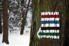 Zeichen des Wanderwegs auf dem Baum Lizenzfreie Stockfotos