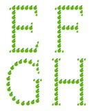 Zeichen - E, F, G, H gebildet vom Apfel. Stockfoto