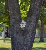 Zeichen eingebettet in einem Baum Stockfotos