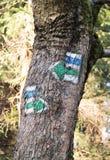 Zeichen für Touristen auf dem Baum Lizenzfreie Stockfotos