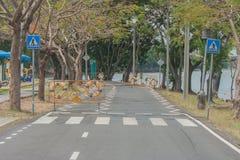Zeichen und Symbole des Fahrrades auf Fahrradweg Lizenzfreie Stockfotos