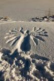Zeichenadler gestempelt auf dem weißen Schnee Stockbilder