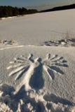 Zeichenadler gestempelt auf dem weißen Schnee Stockfotos