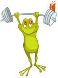 Zeichentrickfilm-Figur-Frosch Stockfotos