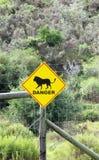 Zeichenwarnung des Vorhandenseins der Löwen Lizenzfreie Stockfotos