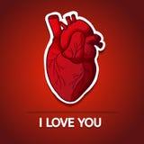 Zeichnen des menschlichen Herzens auf einem roten Hintergrund mit Stockfotos