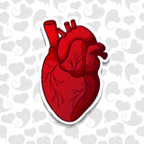 Zeichnen des menschlichen Herzens auf Hintergrundmuster von Stockfoto