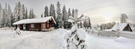 Zeichnen Sie beflecktes Holz des Bauernhauses Mahagonibaum, im Tannenwald des verschneiten Winters auf Lizenzfreie Stockbilder