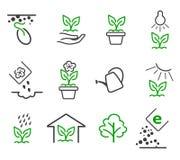 Zeichnen Sie die wachsenden eingestellten Vektorikonen des Sprösslings und der Anlage Lizenzfreies Stockbild