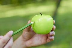 Zeichnen Sie grünen Apfel des abgehobenen Betrages in den Händen eines Mannes an Lizenzfreies Stockbild