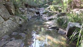 Zeichnen Sie oben entlang West-Ithaca-Nebenfluss, Brisbane Australien auf stock footage