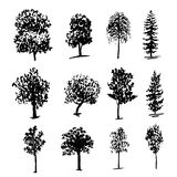 Zeichnende collectiondifferent Arten von Bäumen schwärzen Skizzenillustration mit Tinte Stockfotos