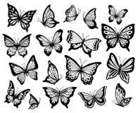 Zeichnende Schmetterlinge Schablonieren Sie Schmetterling, Mottenflügel und Fluginsekten lokalisierten Vektorillustrationssatz stock abbildung