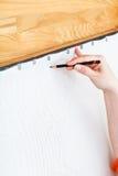 Zeichnung der Bleistiftskizze auf Seide Stockbilder