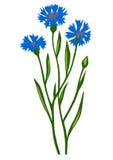 Zeichnung der Blume Lizenzfreie Abbildung