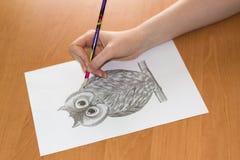 Zeichnung der Eule auf einem Blatt Papier Lizenzfreies Stockbild