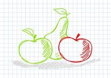 Zeichnung der Früchte lizenzfreie abbildung