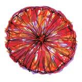 Zeichnungsaquarellblume stockbild