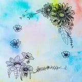 Zeichnungsblumen- und -regenbogenaquarell stockbilder