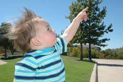 Zeigen auf den Himmel Stockfotografie