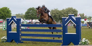 Zeigen Sie das Springen an der königlichen Bad- und Westshow Stockfoto