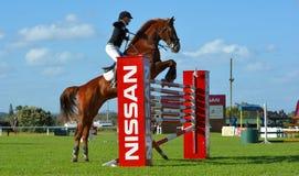 Zeigen Sie den springenden Sieger mit 6 Stangen Stockfoto