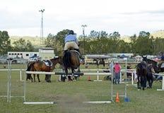 Zeigen Sie Pferde- u. Hürdenhindernislaufland des Reiters springendes ehrlich Lizenzfreie Stockfotos