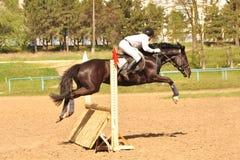 Zeigen Sie springende geöffnete Meisterschaft in Chisinau 2012 Stockbild