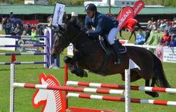Zeigen Sie springendes Pferd und Mitfahrer Lizenzfreie Stockfotos