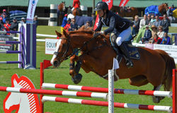 Zeigen Sie springendes Pferd und Mitfahrer Lizenzfreies Stockbild