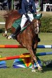 Zeigen Sie springendes Pferd und Mitfahrer Stockbild